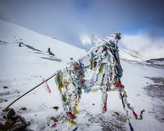(Nathan A Rodgers) Tags: nepal mountain snow mountains nature trekking trek asia hiking hike countries backpacking himalaya annapurnacircuit annapurna himalayas southasia manang thorungla 2013 westernregion