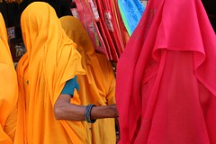 saris (Cathy Le Scolan-Qur Photographies) Tags: street pink india colors rose yellow jaune women couleurs ngc pushkar rue femmes inde tissu indiennes