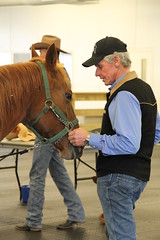 Mike at the Saddle Fitting Workshop with Todd Bailey