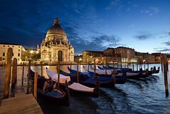 Venice blue hour