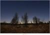 De hemel van de draak (5D319379) (nandOOnline) Tags: nederland natuur peel hemel draco limburg landschap ster maan draak sterren varens sterrenbeeld maanlicht grootepeel berken sterrenbeelden berkenbomen ospeldijk