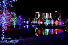 VitruvianPark-1 (projectidentifyphoto) Tags: christmas nightphotography bridge trees music cold reflection water lights nikon nightshot awesome christmaslights nighttime addison raywatkins d5100 vitruvianpark