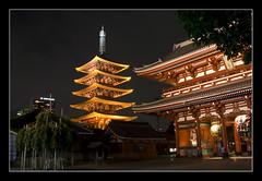 O-mikuji, Sensō-ji @Tokyo, Japan (brunombo) Tags: travel japan night temple lights tokyo shrine strada pentax religion buddhism luci asakusa shinto tamron viaggio notte giappone omikuji insegne tempio religione sensōji buddismo templio scintoismo tamronaf18250mmf3563diiildasphericalifmacro justpentax