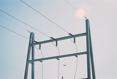 The Powerlines - Canon AE-1 (Robert Gotham) Tags: sky tower robert film analog canon out cool phone kodak ae1 surreal pole iso faded adobe 400 washed gotham developed electrictower telephonewires lightroom ultramax vsco kodakultramax400isocolorfilm
