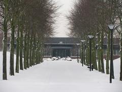 THE END (streamer020nl) Tags: schnee trees winter snow holland netherlands bomen sneeuw end nl 2009 crematorium lampposts einde lantarenpalen