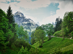 Lech Warth (jmauerer) Tags: street flowers blue trees light sky white mountains flower tree green nat