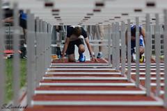 Kant. Meisterschaft ZH-0080.jpg (s-lieni) Tags: sport schweiz athletics zürich meisterschaft leichtathletik sihlhölzli nikond7000