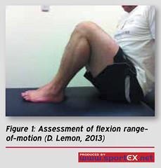 61MD15_1 (sportEX journals) Tags: acl cruciate ligament anterior sportex sportsinjury rehabilitiation sportstherapy sportexmedicine