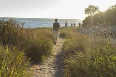 Walking Sunset at The Knob (biesterd11) Tags: capecod cape cod knob sunset sun set massachusetts ma falmouth buzzard bay