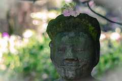 The Art of being happy... (marionrosengarten) Tags: statue smile happy satisfaction happniness contentment garden park museumsinselhombroich bokeh dof nikon flowers nature bubbles light green asian zen meditation art spiritual