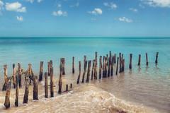 Progreso (Ray Devlin) Tags: gulfofmexico ocean sea gulf mexico nikon progresso beach turquoise water piles groyne