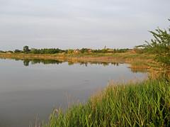 Lake Rusanda (L.L.V.) Tags: rusanda banja spa lake jezero swans labudovi national park birds beautiful nature travel tourism destination srbija vojvodina serbia banat melenci