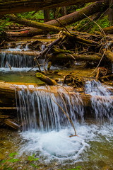 Along The Way (stevenbulman44) Tags: water forest canon summer 1740f40l lseries landscape color