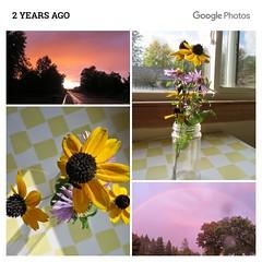 Beautiful Flowers and Skies (genesee_metcalfs) Tags: collage sunset flowers bouquet blackeyedsusan michaelmasdaisy rainbow sky