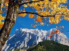 Zugspitze im Herbst (bayernphoto) Tags: zugspitze tirol ehrwald herbst autumn fall laubfaerbung foliage berg mountain austria oesterreich kirche ahorn kastanie orange rot schnee hoechster gipfel deutschlands bayern bavaria zwiebelturm strahlend bunt