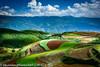 DSC_2099 (Edwin Lim Soo Yong) Tags: 云彩 曙光 油菜花 风景 红土地 云南 yunnan 云南红土地 earth sky cloud 天空 山丘 农作物 crops tikusroundtheworld