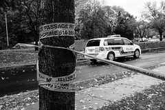 Murder on my street: cordon off (2/3) (Papaye_verte) Tags: murder police meurtre streetphotography ledessoeurs canada montral qubec