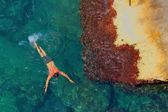 Il nuotatore (marcus.greco) Tags: sea water nuotatore swimming colors summer man