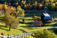 Barn in the Hollow (Christina DeAngelo) Tags: farm sleepyhollowfarm woodstock vermont newengland hollow rollinghills lawn grass driveway fence horsefence trees foliage fall autumn woods house structure wooden shadows