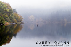 Loch Ard hidden rock (garry q) Tags: loch lochard watercourse cross trees reflection mist fog autumnal autumn beautiful golden brown