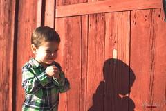 Shadow of a Boy (Daniel Scott Murphy) Tags: elijah portrait child fall kansas haysville boy youth twoyearsold two outdoors warm acdsee