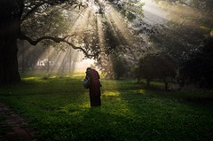 Searching light! (ashik mahmud 1847) Tags: bangladesh d5100 nikkor light sunrays morning trees park people woman