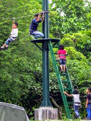 Foxy flying (hastuwi) Tags: ecopark ancol jakarta jakartaraya indonesia idn foxy fling fox kids children child anak anakanak kanakkanak friends family park