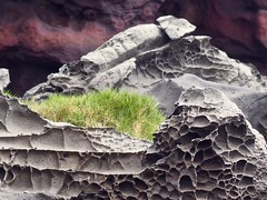 lava (piranhabros) Tags: nakalele blowhole maui northshore hawaii lava grass