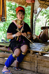 A colorful Kayan Lahwi Lady (Anoop Negi) Tags: kayan lahwi karen padaung woman lady girl fashion neck ring brass long portrait colorful thailand burm border chinagmai anoop negi ezee123 photography photo ethnic ehnography