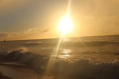 IMG_1430 (michelleingrassia) Tags: banzaipipeline northshore oahu hawaii hi sunset beach