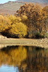Laguna del Salmoral (jcmejia_acera) Tags: sierra madrid estanque laguna lake reflejo reflex rboles trees montaa naturaleza nature paisaje landscape ocio campo