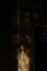 DSC_2528 (timmie_winch) Tags: timwinchphotography helmingham helminghamhalldeer helminghamhall helminghamdeer deer roedeer reddeer fallowdeer nikon d300 nikond300 50400mm sigma50400mmlens sigma wildlife wild wildlifephotographer wildlifephotography 2016 november november2016