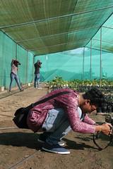 memories of 2016-17 (nau students' photo critic forum) Tags: nau memories 201617 nevilzaveri campus field navsari photography course students