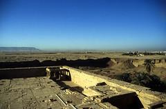 Ägypten 1999 (536) Tempel von Dendera