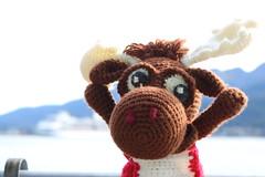 IMG_3115 (The Crochet Crowd) Tags: crochetmoose amigurumi moose crochet doll alaska britishcolumbia thecrochetcrowd michaelsellick jeannesteinhilber danielzondervan crochetcruise mooseontheloose