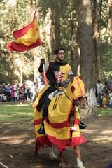 LRM_EXPORT_20161017_144832 (Omar Reina) Tags: medievo medieval caballo espadas caballeros danzantes bufon antorcha bailarinas arabes halcon acrobacias justas duelos batallas