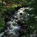 Hamerský potok v Antýglu