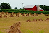 Apple Creek, Ohio Hand Made shocks by Amish (socaltoto11) Tags: farming barns oldbuildings oldbarns farms applecreekohio countrylandscapes ohioamishcountry