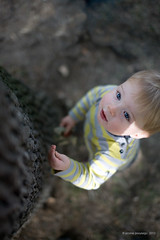 The day I will grow up (Jerome Pouysegu) Tags: boy portrait baby tree children 5d