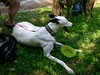 spyjuly2011005