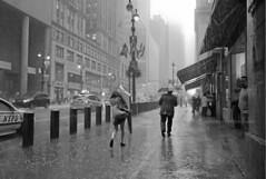 Heavy Rain on 42nd - New York City (Nico Geerlings) Tags: nyc newyorkcity usa ny newyork wet water rain umbrella 35mm us manhattan nypd midtown summicron rainy rainstorm thunderstorm raining pouring grandcentralterminal 42ndstreet mygearandme nicogeerlings leicammonochrom
