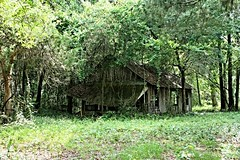 """Well, you hear me singin' my lonesome song. (Life Down a Limerock Road) Tags: old house history abandoned rural vintage lost photography ruins florida decay country historic explore forgotten cracker vanishing wanderer style"""" rurex exploration"""" """"rural """"cracker"""