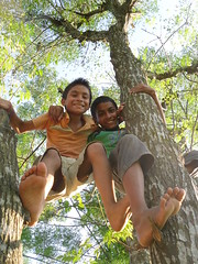 """King of the Trees! (www.mahliaamatina.com) Tags: nepal india playing green nature boys monkey shoes king with indian barefoot hanging rest swinging relaxation carefree tarzan chitwan teamwork nepali downtime rnr """"time nature"""" up"""" feet"""" """"bare trees"""" life"""" """"playing """"happy """"no fun"""" out"""" climbing"""" """"like go"""" """"taking little"""" """"having """"natural about"""" """"messing """"two """"hanging on"""" boys"""" orphans"""" outside"""" playing"""" shoes"""" """"being """"climbing """"smiling """"outside """"nepali """"tarzan mickey"""" """"chilling """"letting swinging"""" playtime"""" monkies"""" mindful"""" """"enjoying playful"""" """"loosening"""