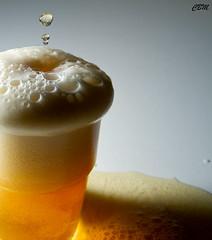 Beer Mushroom (chris.bonatto) Tags: glass drink flash drop foam bier blitz birra glas highspeed bicchiere goccia schiuma bibita sigma1770 lampista strobist canoneos7d altavelocit yn568ex yn622wirelessttlflashtrigger