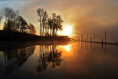 Washougal Dawn (Darrell Wyatt) Tags: morning trees reflection fog clouds sunrise dawn washington day wharf washougal