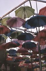 (DanielJPHadley) Tags: colour london art umbrella southbank boroughmarket
