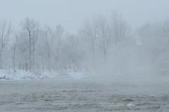 DSC_3939a (Fransois) Tags: winter monochrome fog river hiver rivière berge brouillard