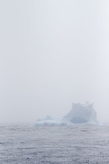 Antarctica - Day Two0241 (GLRPhotography) Tags: mist penguin antarctica iceberg adelie 100400