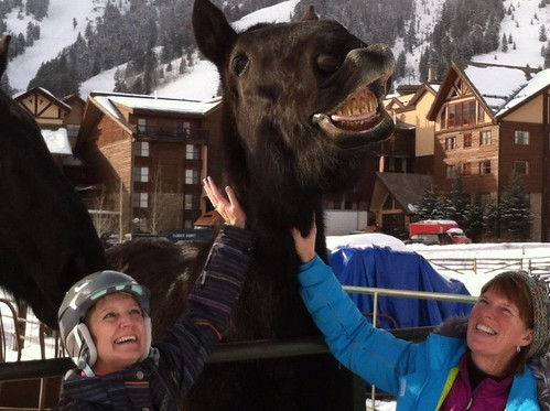 Paula & Linda scoring big points with a smiling horse, during Red Eye's Photo Scavenger Hunt at Jackson Hole.