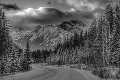 Canadian Rocky Mountains (Josiane .) Tags: winter snow canada storm mountains nature pine clouds blackwhite nikon jasper rockymountain roads cans2s